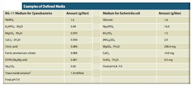 example of Defined media