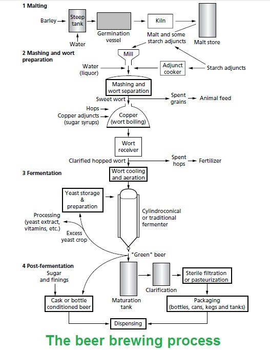 The beer brewing process.